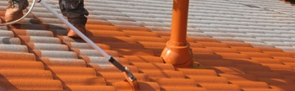 Waterproofing paints protect houses from humidity by leaks